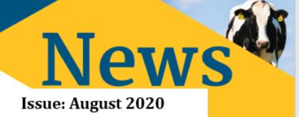 August Newsletter 2020