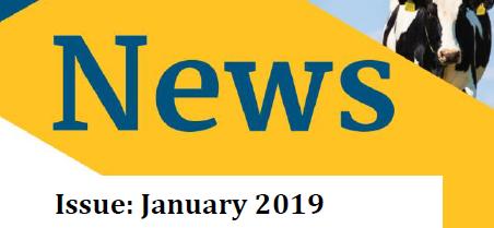 January Newsletter 2019