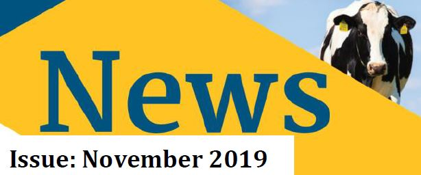 November Newsletter 2019