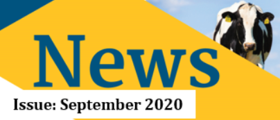 September Newsletter 2020